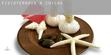 Fisioterapia a  Chicago