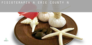 Fisioterapia a  Erie County
