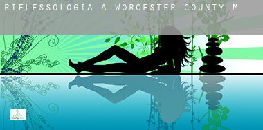 Riflessologia a  Worcester County