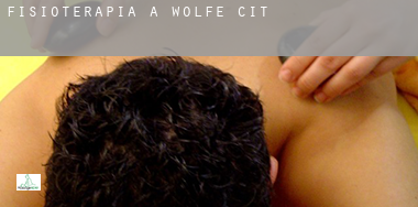 Fisioterapia a  Wolfe City