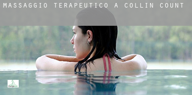 Massaggio terapeutico a  Collin County