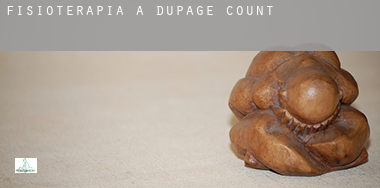 Fisioterapia a  DuPage County