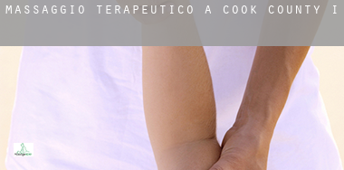 Massaggio terapeutico a  Cook County
