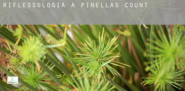 Riflessologia a  Pinellas County