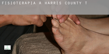 Fisioterapia a  Harris County